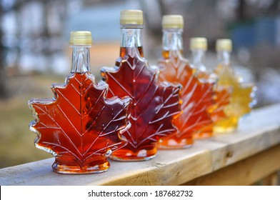 Different colour variatons of maple syrup made by a backyard hobbyist in Springhill, Nova Scotia.