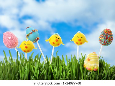 Different delicious cake pops for Easter celebration in green grass against blue sky