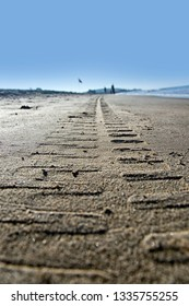 Different footprints in the sand - by the sea