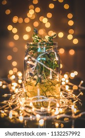 Different herbs or green plants in a glass transparent jar with some water in it, surrounded and decorated with christmas lights in an indoor environment. Concept of home made healthy products.