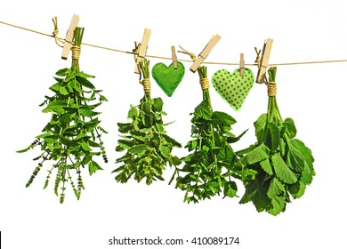 different kinds of fresh mint hanging on a leash with small fabric hearts