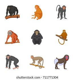 Different kinds of monkeys icons set. Cartoon set of 9 different kinds of monkeys  icons for web isolated on white background