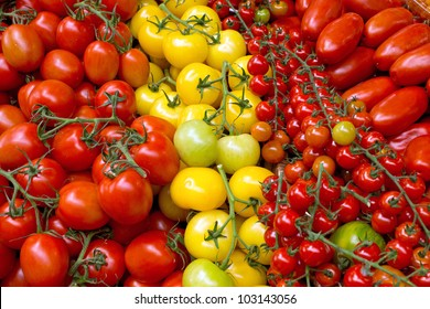 Different kinds of tomatoes