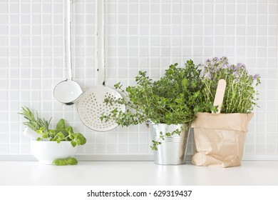 different kitchen herbs with decoration