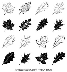 Different leaves, set of black and white pictograms - elements for design.