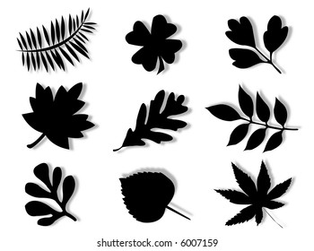 Different leaves of different trees in silhouette