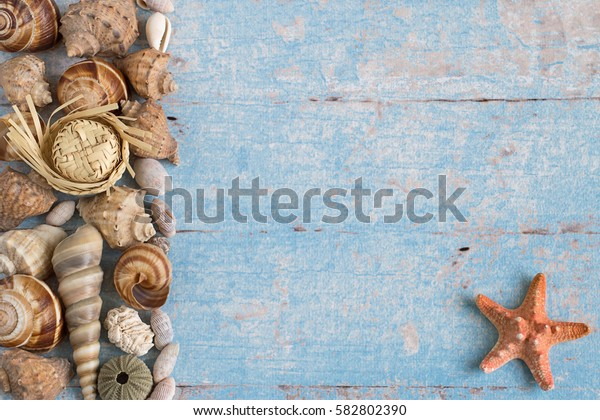 Different marine items on blue wooden background. Sea objects - shells, sea stars on old wooden planks.