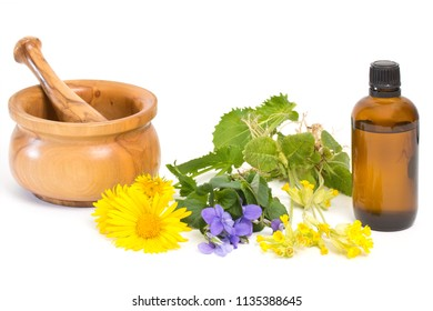 Different medical herbs with mortar and pestle near medicine bottle
