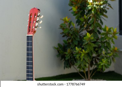 Different perspectives of the neck and headstock of a Spanish guitar taken in the garden