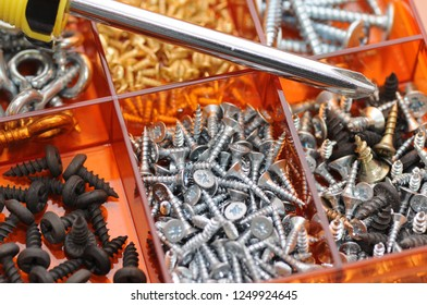 Different screws are disassembled in cells in the organizer.