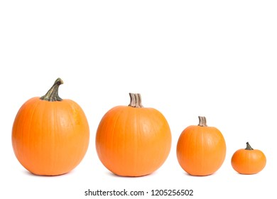 different size pumpkins isolated white background