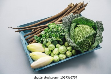 different sorts of winter vegetables on a tray, savoy cabbage, chicoree, brussel sprouts, black salsify and field salad