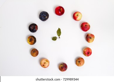 Different stages of life - Birth to death. Concept of Aging, growth, death. Age and disease creep on us all. apples of different age on white background clock hand from leaves