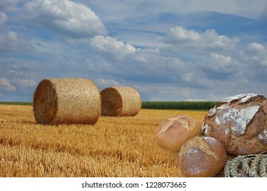 different types of bread with stubble field in the background