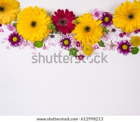Different Types Flowers On White Background Stock Photo Edit Now