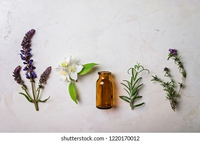 Different types of fresh herbs   for alternative medicine and aromatherapy on  grey background, top view