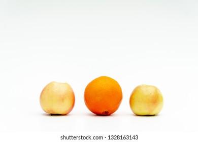 different types of fruit symbolize diversity