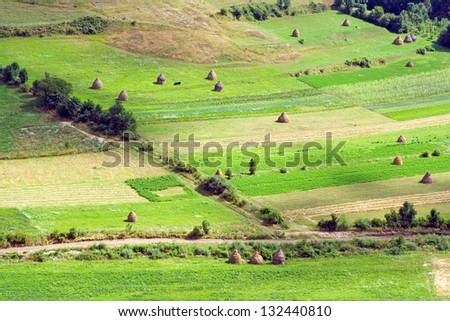 Different types of landscapes with spring, summer,autumn and winter - Different Types Landscapes Spring Summerautumn Winter Stock Photo