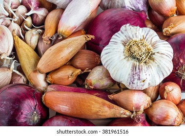 Different types of Onions and Garlic