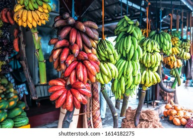 different varieties of bananas in the tropical fruit market on Sri Lanka