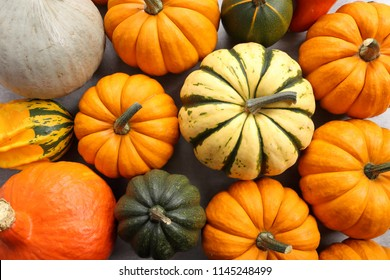 Different varieties of colorful pumpkins and squash. Vegetables and fruits. Top view.