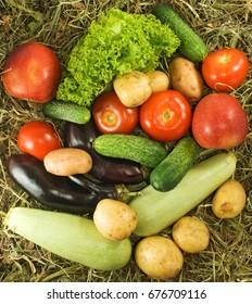 Different vegetables closeup