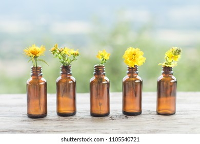 Different yellow wildflowers in bottle natural rustic background. Ayurveda Alternative Medicine Spa Herbal Health Wellbeing Aromatic Aromatherapy Phytotherapy Homeopathy Pharmacy Body Care Concept