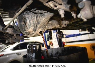 Differential Gear oil change fluid service