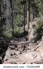 Difficult Hiking Trail