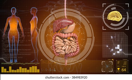 digestive system on HUD futuristic background.