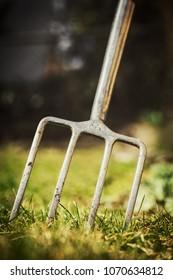 Digging fork in the garden, gardening tool for a gardener, copyspace