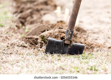 Digging in the garden, at home garden work.