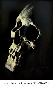 Digital art, paint effect, Close up of cracked and damaged human skull