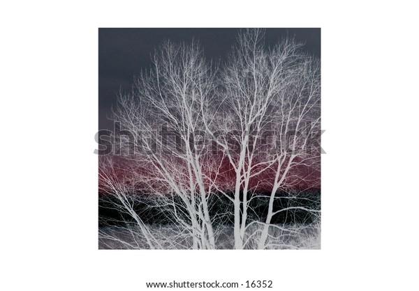 digital art of trees