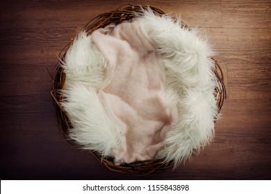 Digital background, newborn nest on oak wooden floor