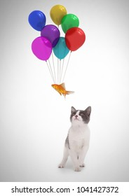 Digital composite of Cat watching fish floating tied to balloons