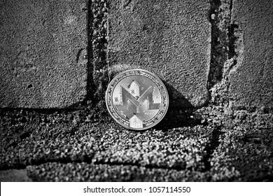 Digital currency physical metal silver monero coin. Cryptocurrency flower concept.