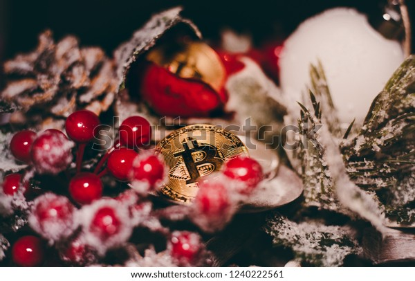 Digital currency witch christmas decoration on christmas background.  Crypto currency christmas snow composition. Two shining golden bitcoins between the needles and cone