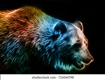 Digital drawing of a bear