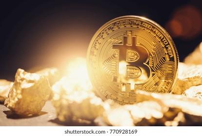 Digital Gold Tulip Bitcoin - bitcon bubble concept image