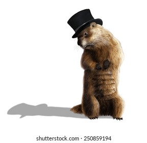Digital illustration of a groundhog looking at his shadow