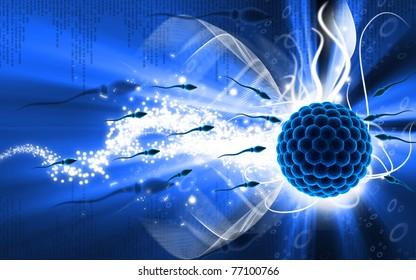 Digital illustration of Sperm and Egg  in colour background