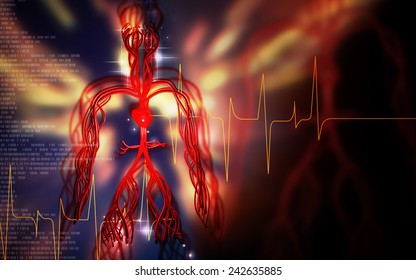 Digital illustration of vascular system in colour background