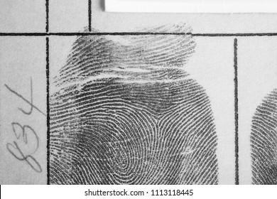 Digital ink fingerprint over a textured paper. Security control. Horizontal