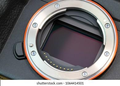 Digital mirrorless camera full frame sensor, macro shot