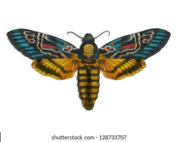 digital painting of a colorful death's head moth spreading its wings