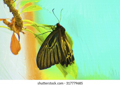 Digital painting colorful style,butterfly on the branch.