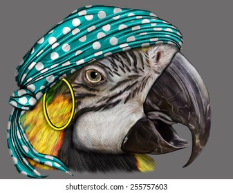 A Digital painting of a green,blue an yellow, Macaw Parrot with a turquiose pirate head scarf.