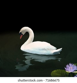 digital painting of a white mute swan floating on dark water above a rippling reflection