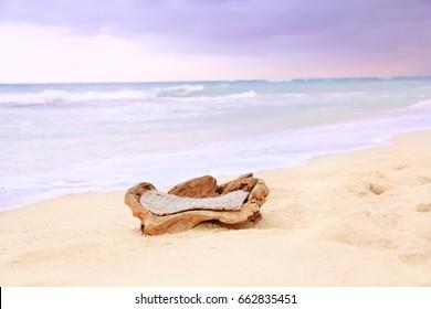 Digital Photography Background Of Driftwood On Hawaii Tropical Beach